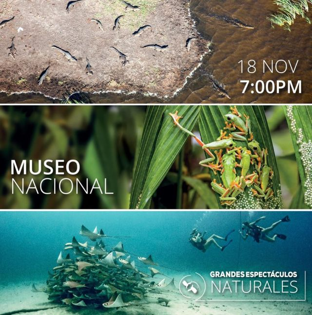 espectaculos_naturales